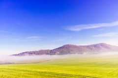 Paesaggio verde della collina e del campo Immagini Stock Libere da Diritti