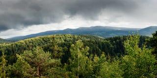 Paesaggio verde della foresta della montagna Fotografia Stock
