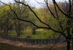 Paesaggio verde della regione selvaggia nella città fotografie stock