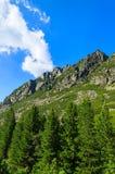 Paesaggio verde di alte montagne di Tatra, Slovacchia di estate Fotografia Stock Libera da Diritti