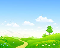 Paesaggio verde di estate illustrazione vettoriale
