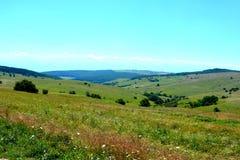 Paesaggio verde di estate nella Transilvania Immagini Stock