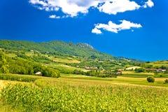 Paesaggio verde idilliaco della montagna di Kalnik Immagine Stock