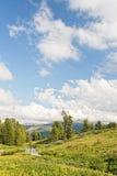 Paesaggio verticale con le montagne Immagini Stock Libere da Diritti