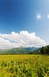 Paesaggio verticale con le montagne, Fotografia Stock Libera da Diritti