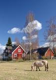 Paesaggio verticale svedese idillico Immagini Stock Libere da Diritti