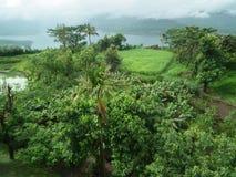 Paesaggio vibrante di monsone Immagine Stock