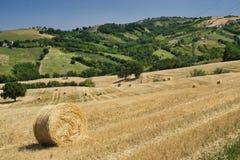 Paesaggio vicino ad Ascoli Piceno ad estate Immagini Stock Libere da Diritti