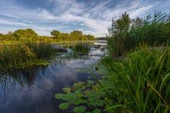 Paesaggio vicino al fiume di Myhiia l'ucraina fotografia stock libera da diritti