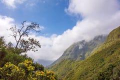 Paesaggio vicino alle 25 cadute di Fontes, Madera Fotografia Stock