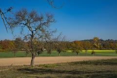 Paesaggio vicino a Wiesloch, Germania Sull'itinerario ha chiamato Fachwerkstrasse Contro cielo blu immagine stock libera da diritti