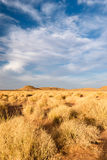 Paesaggio vicino a Zagora, Marocco Fotografia Stock Libera da Diritti