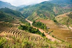 Paesaggio vietnamita del nord. Fotografia Stock