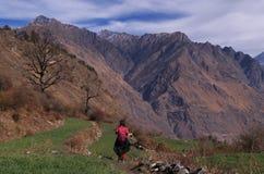 Paesaggio-XXV del passaggio di Kuari di inverno Fotografie Stock