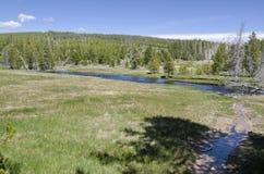 Paesaggio in Yellowstone Fotografia Stock