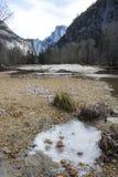 Paesaggio in Yosemite con la foresta e le montagne del fiume del ghiaccio Immagini Stock