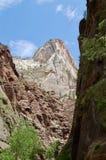 Paesaggio a Zion National Park immagini stock libere da diritti