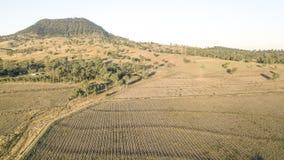 Paese agricolo e campo di azienda agricola Fotografia Stock