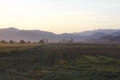 Paese dell'azienda agricola di primo mattino Fotografia Stock Libera da Diritti