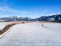 Paese di inverno da un fuco Fotografia Stock Libera da Diritti