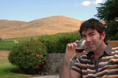 Paese di vino 4 Immagine Stock Libera da Diritti