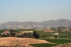 Paese di vino Immagini Stock