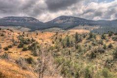 Paese irregolare nel Wyoming rurale durante l'estate fotografie stock libere da diritti