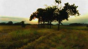 Paese tropicale del sole Fotografia Stock Libera da Diritti