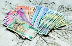 Paese usato Sri Lanka delle banconote Immagine Stock