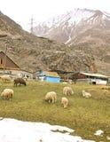 paesino di montagna del Caucaso Immagine Stock