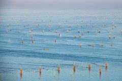 Paesino di pescatori all'isola del granchio, selangor Malesia immagine stock libera da diritti