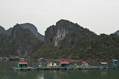 Paesino di pescatori in Halong Bau Fotografie Stock