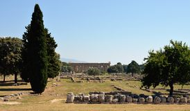 Paestum寺庙,褶皱藻属,意大利 库存图片