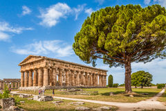 Paestum考古学站点,褶皱藻属,意大利寺庙  免版税图库摄影