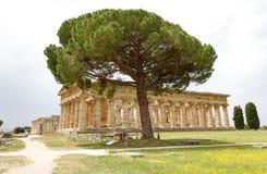 Paestum,意大利 库存照片