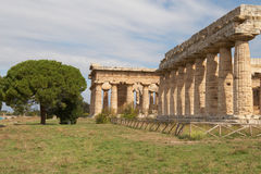 Paestum Stock Photos