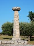 Paestum - colonne dorique images libres de droits
