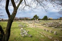 Paestum: Det forntida fördärvar av rest av religiösa byggnader av gammalgrekiskadominansen italy arkivfoton
