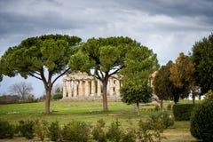 Paestum Forntida roman tempel av Ceres Athena på Paestum, Italien fotografering för bildbyråer