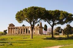 Tempie greche di Paestum - Poseidonia Fotografia Stock Libera da Diritti
