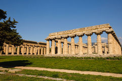 Tempie greche di Paestum - Poseidonia Immagine Stock