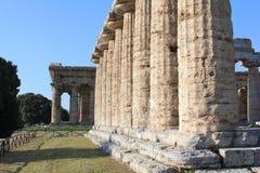 Paestum in Italien Stockbild