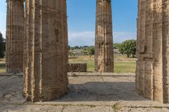 The old temple of Paestum. Paestum, Italy, was a major ansient Greek city on the coast of the Tyrrhenian sea in Great Graecia. The Temples of Paestum was built stock images