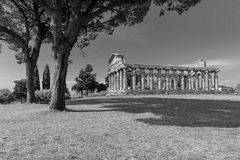 The old town of Paestum. Paestum, Italy, was a major ansient Greek city on the coast of the Tyrrhenian sea in Great Graecia. The Temples of Paestum was built in stock image
