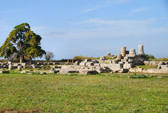Paestum ruins. Ruins of the Roman town around the ancient Greek temples at Paestum in Italy stock photo