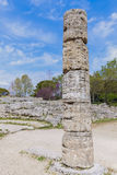 Paestum ruins in Italy Stock Images