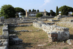 Paestum ruins, Italy Stock Photography