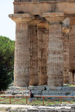 Paestum ruins, Italy Royalty Free Stock Photography
