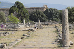 Paestum ruins, Italy Royalty Free Stock Images