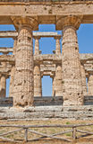Paestum temple - Italy Stock Images